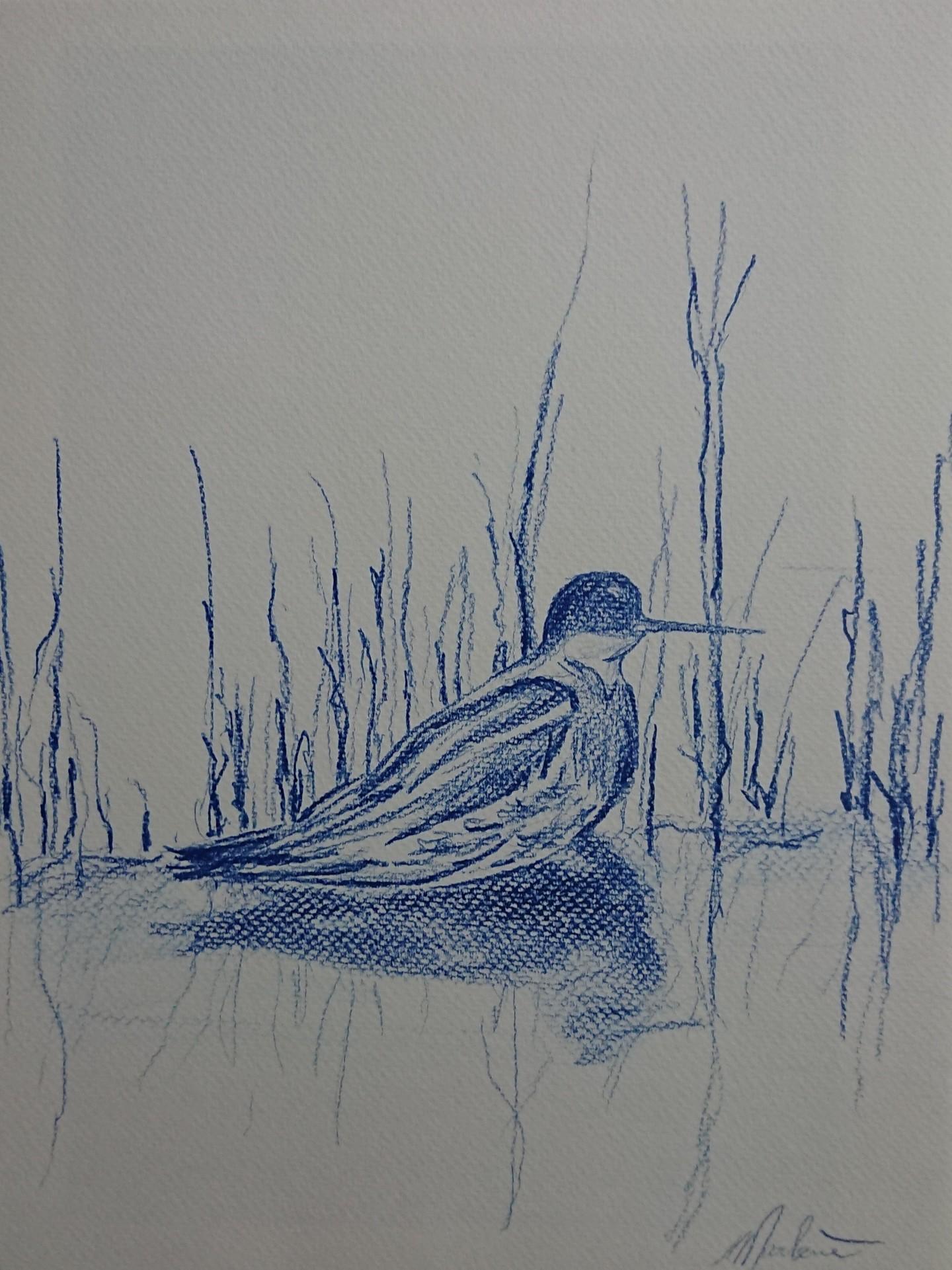Marlène Bonnaffé - Petit oiseau dans les roseaux
